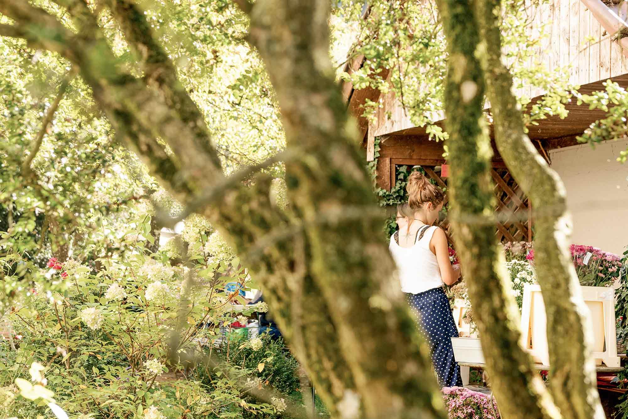 Eselsmühle Gartenwirtschaft Theke